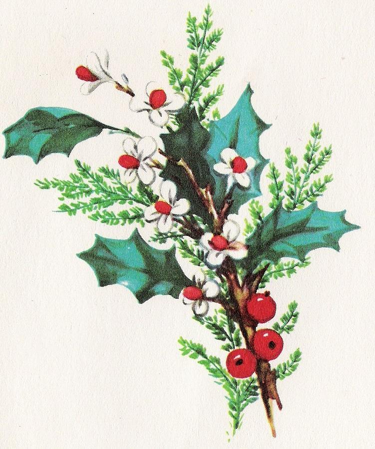Christmas Illustration 1071 Vintage Christmas Cards Mistletoe