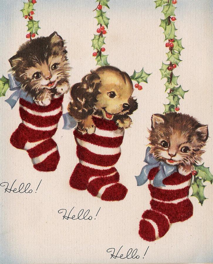 Kitten Christmas Cards.Christmas Illustration 860 Vintage Christmas Cards Cute Kittens