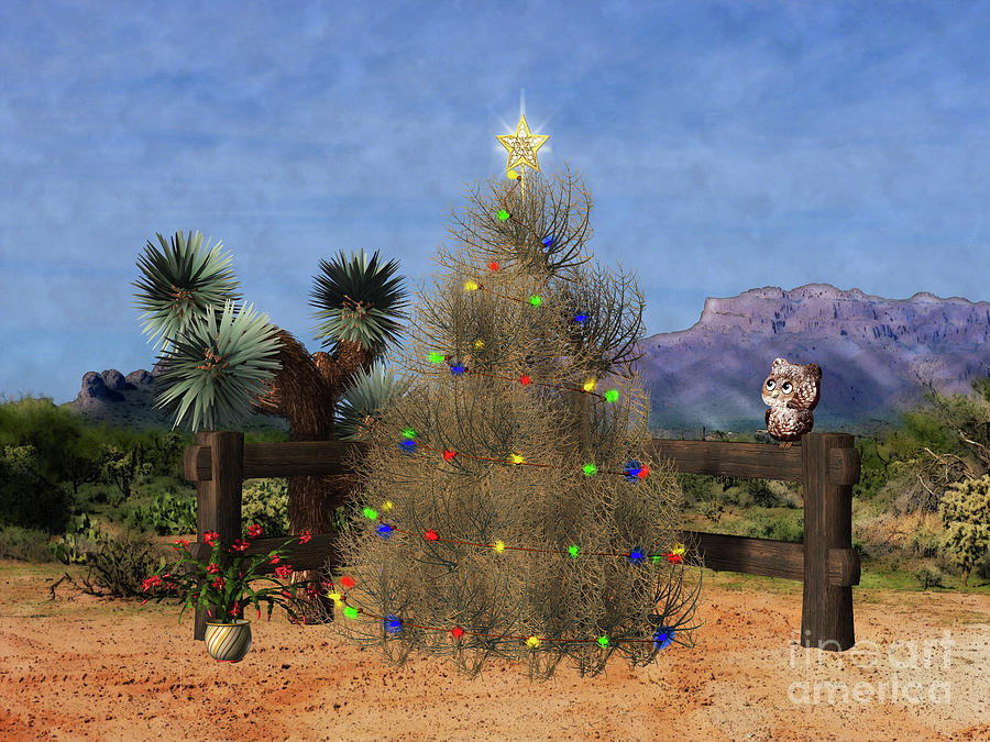 Christmas Tree In The Desert.Christmas In The Desert
