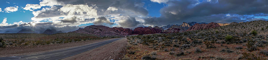 Christmas Photograph - Christmas In The Desert by Ryan Smith