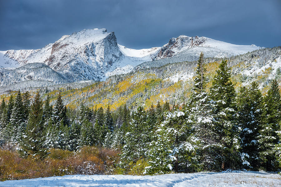 Christmas In The Rockies Photograph
