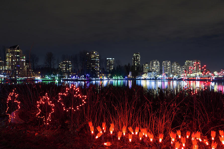 Christmas Photograph - Christmas Lights at Lafarge Lake in City of Coquitlam by David Gn