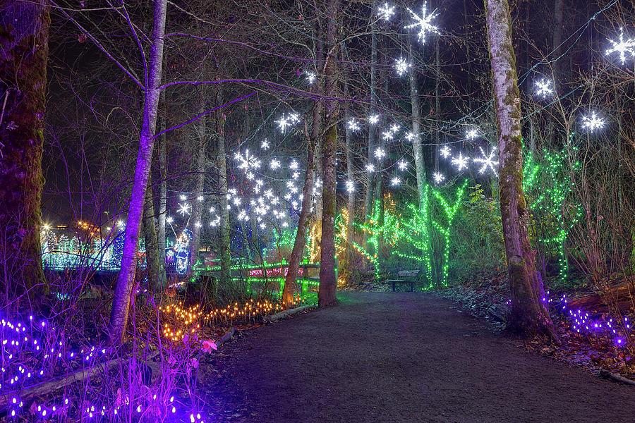 Christmas Photograph - Christmas Lights Decoration along Lafarge Lake Path by David Gn