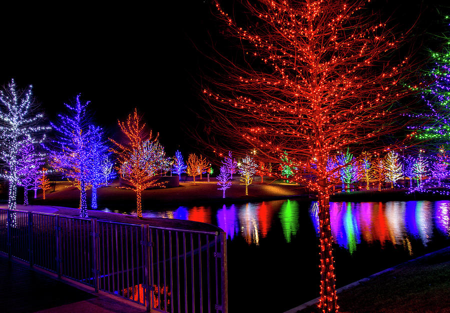 Addison Texas Photograph   Beautiful Christmas Lights Display By Terry Walsh