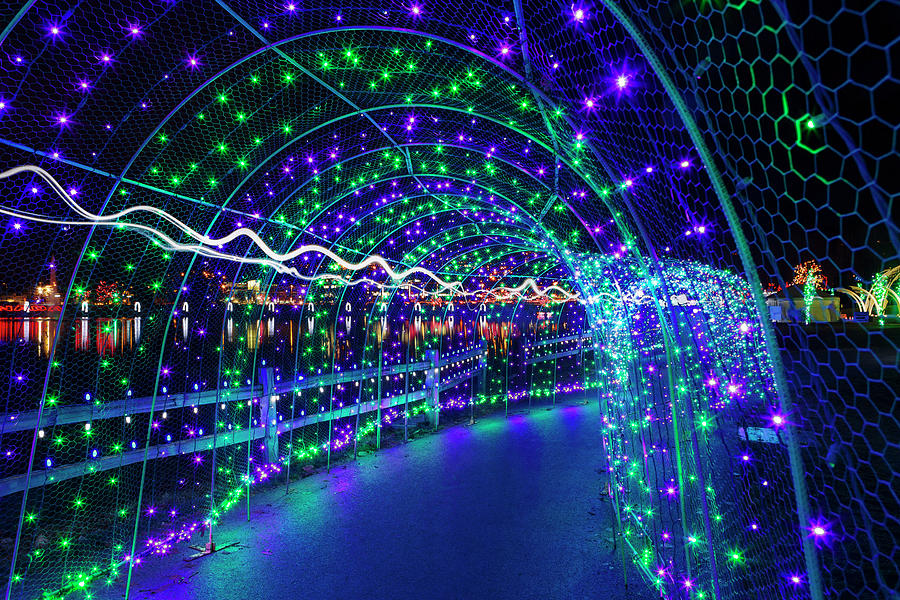 Christmas Photograph - Christmas Lights in Tunnel at Lafarge Lake by David Gn