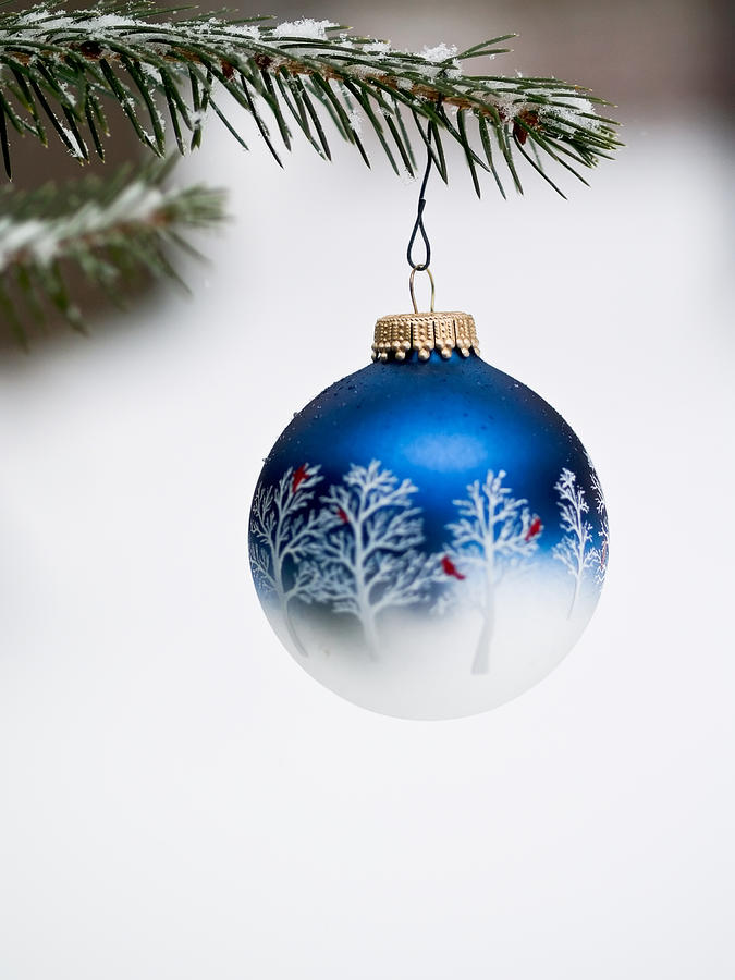 Background Photograph - Christmas Ornament by Jim DeLillo