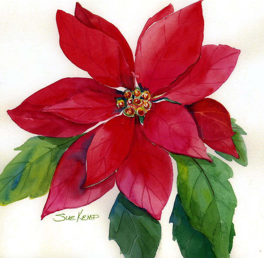 Red Flowers Painting - Christmas Poinsettia by Sue Kemp