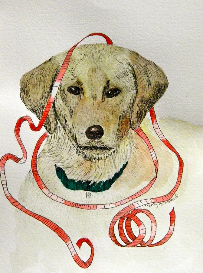 Dog Painting - Christmas Puppy by Terry Honstead