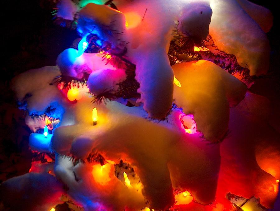 Christmas Tree Photograph - Christmas Snowfall by Denise   Hoff