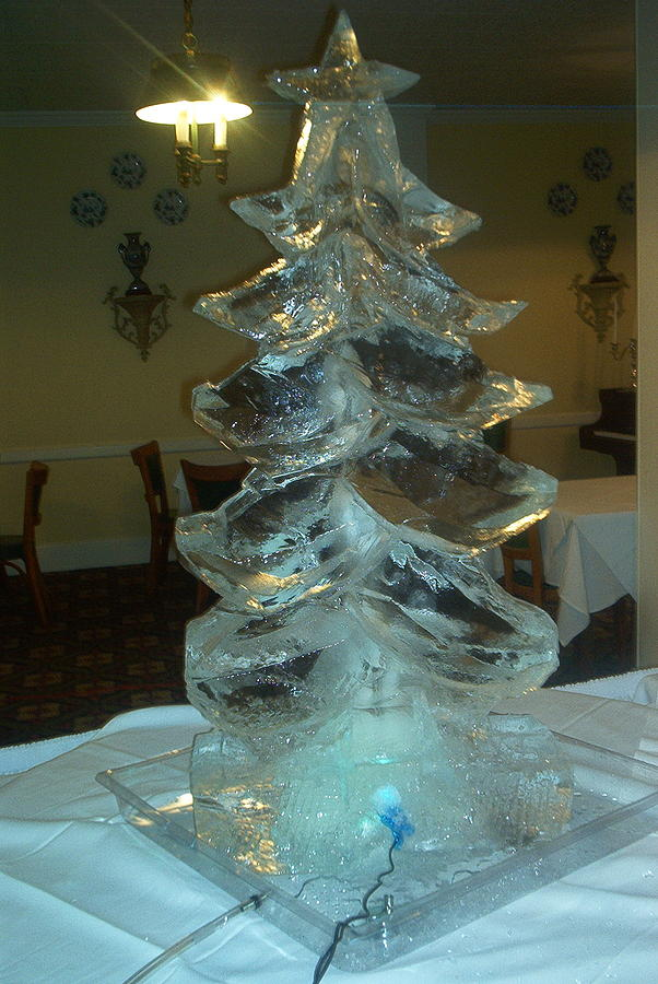 Christmas Tree Sculpture - Christmas Tree by Barry Combess
