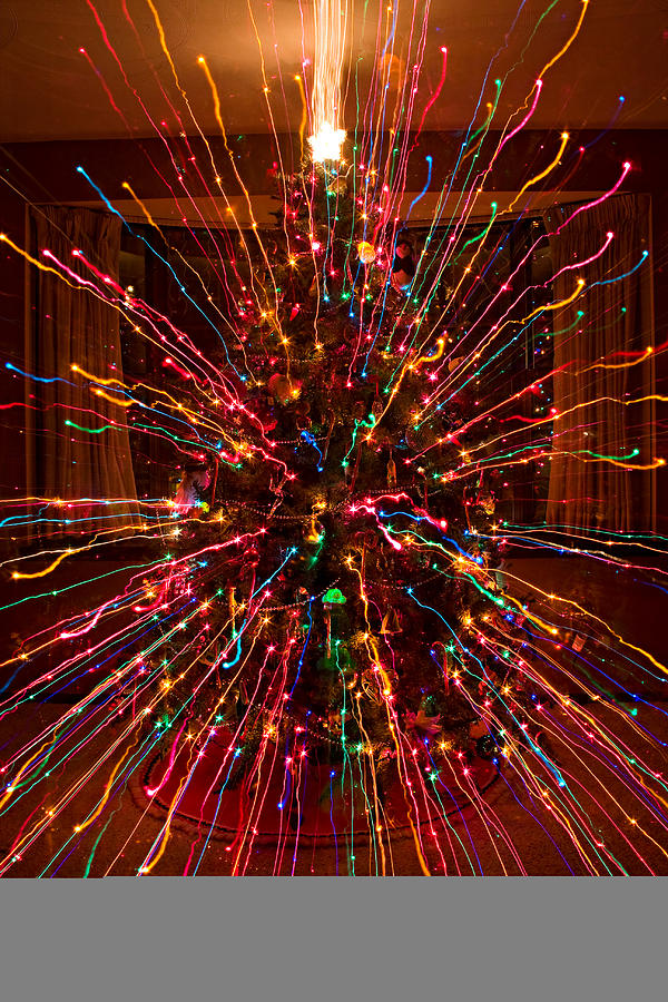 Abstracts Photograph - Christmas Tree Colorful Abstract by James BO  Insogna