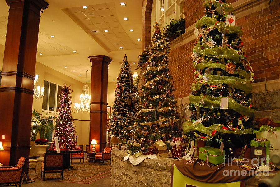 Christmas Photograph - Christmas Tree by Eric Liller