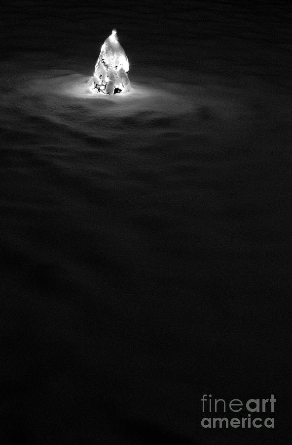 Snow Photograph - Christmas Tree In Snow by Jim Corwin