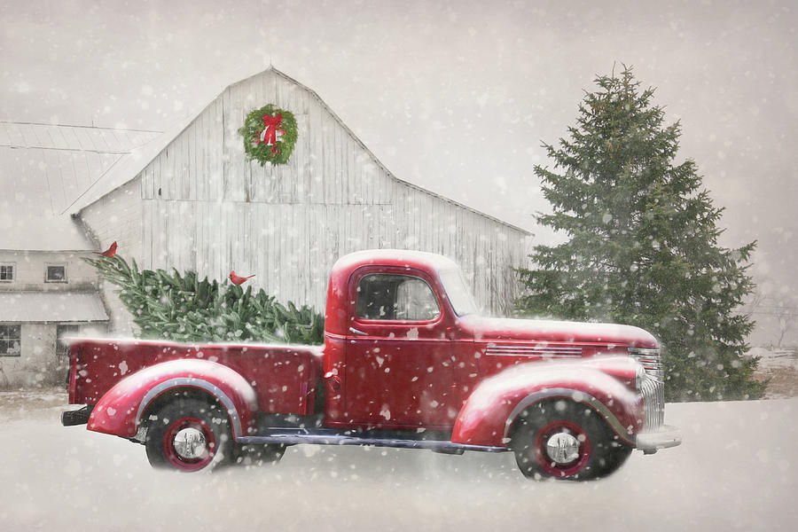 Old Truck With Christmas Tree.Christmas Tree Shopping 2