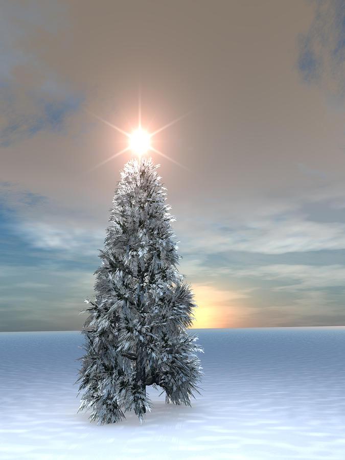 Round The Christmas Tree