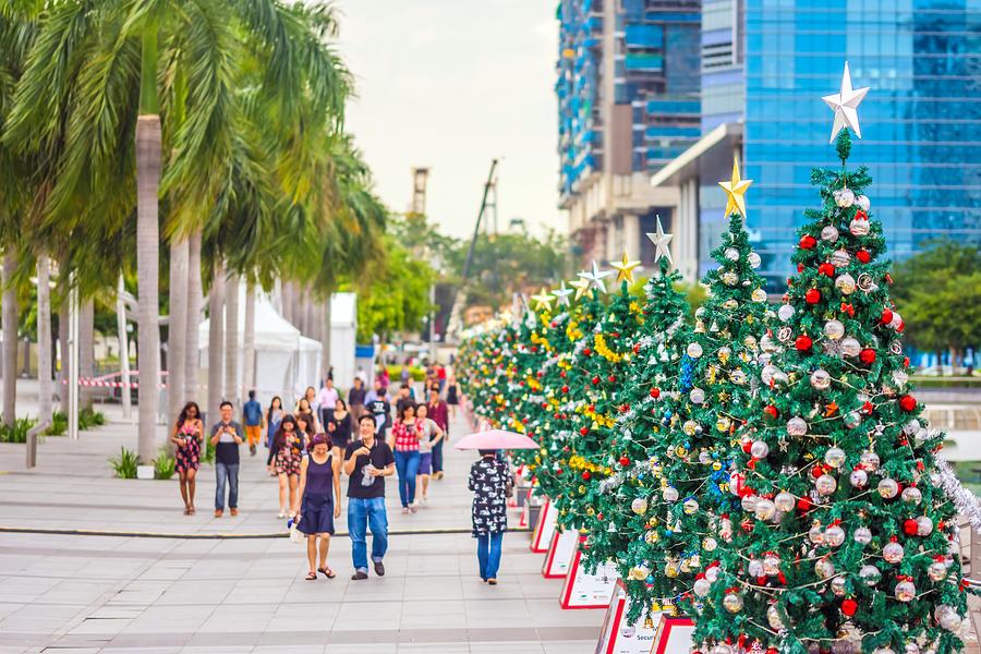 Christmas Photograph - Christmas Trees by Jijo George