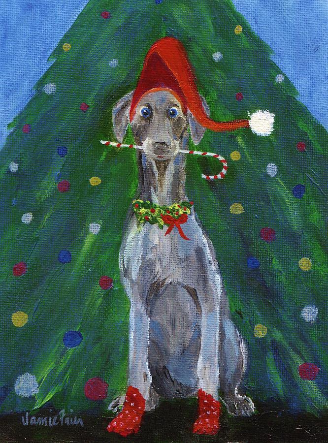 Christmas Weimaraner Painting by Jamie Frier