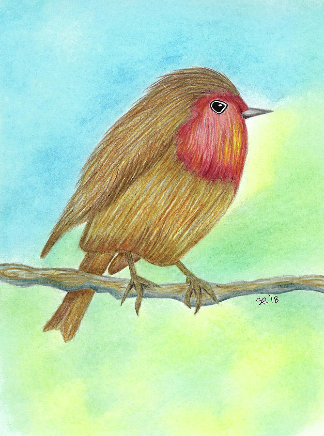 Colored Pencils Drawing - Chubby Bird by Susan Campbell