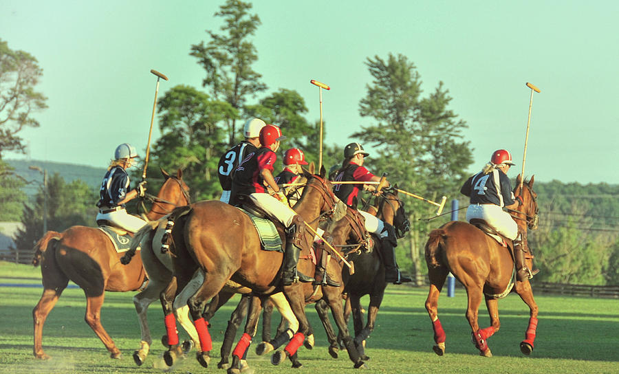 Polo Photograph - Chukker Team by JAMART Photography