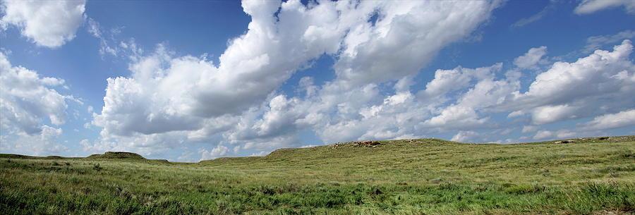 Cimarron National Grassland by Alan Hutchins
