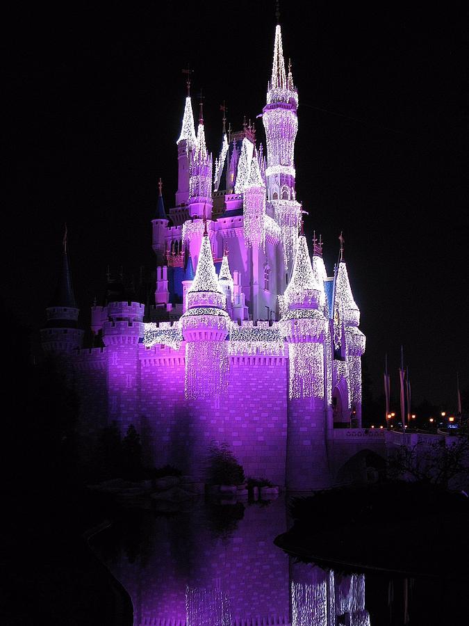 Cinderella Castle Christmas.Cinderella Castle Christmas Reflection