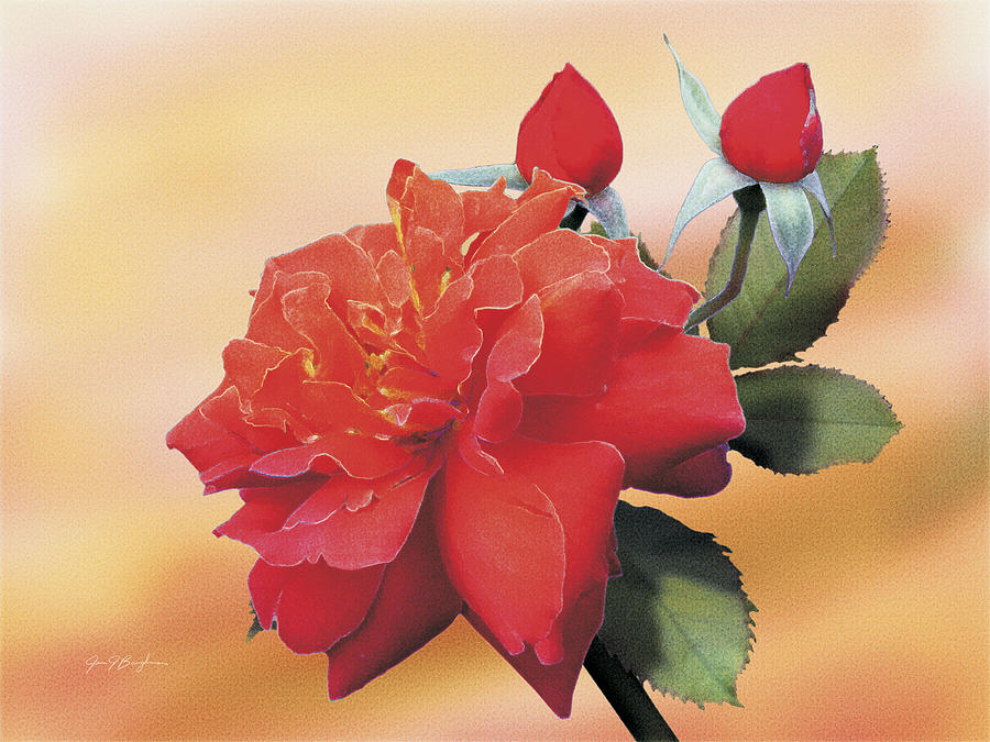 Roses Painting - Cinnamon Roses by Jan Baughman