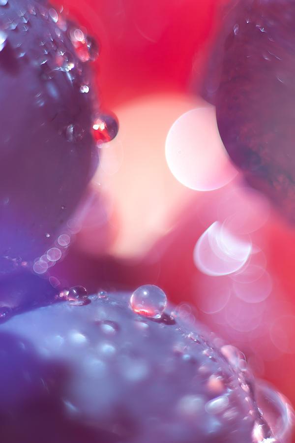 Circles Photograph - Circles by Mark White
