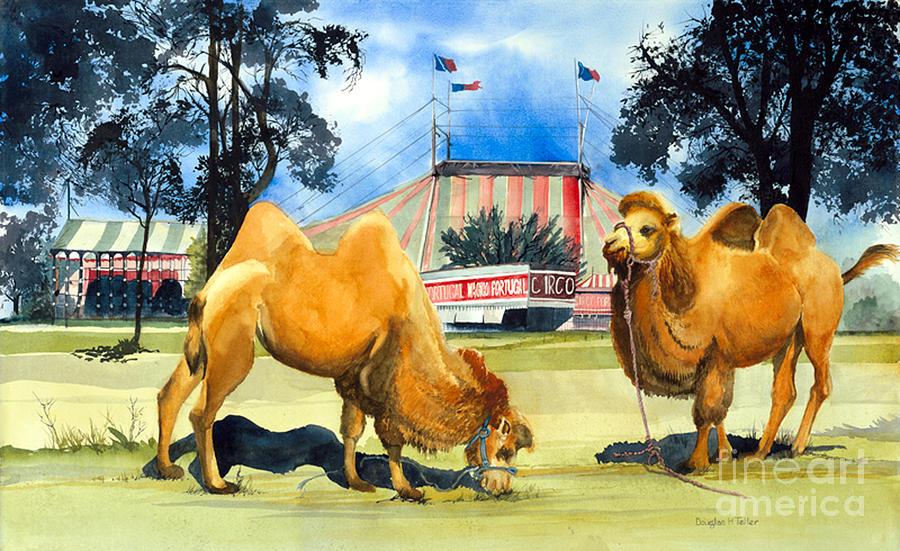 Circo Magico by Douglas Teller