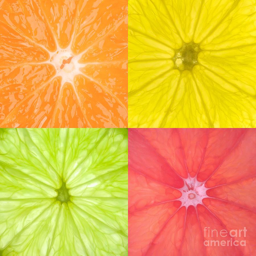 Citrus Photograph - Citrus Fruits by Richard Thomas