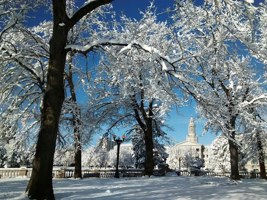 Civic Center After Blizzard Photograph