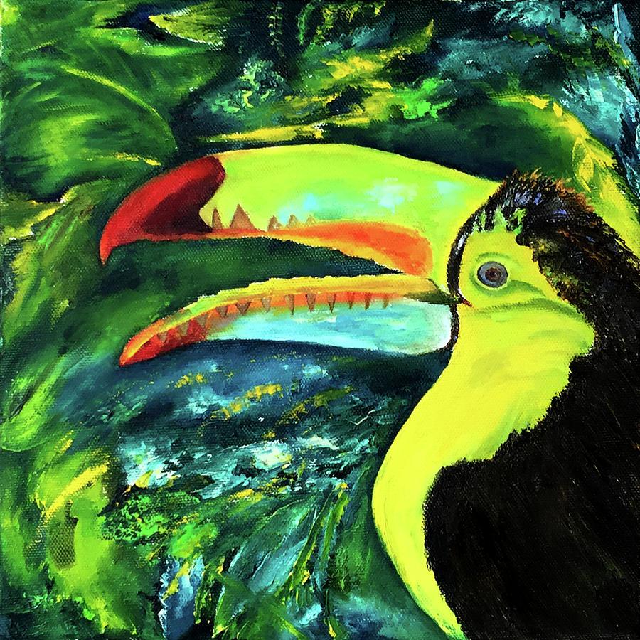 Clara's Toucan by Terry R MacDonald