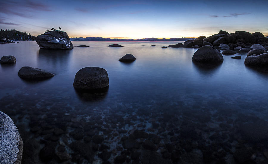 Bonsai Rock Photograph - Clarity by Brad Scott