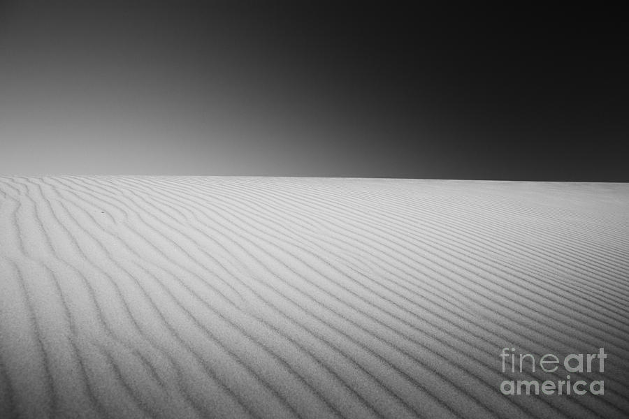 Dunes Photograph - Clarity by Pierre GAY
