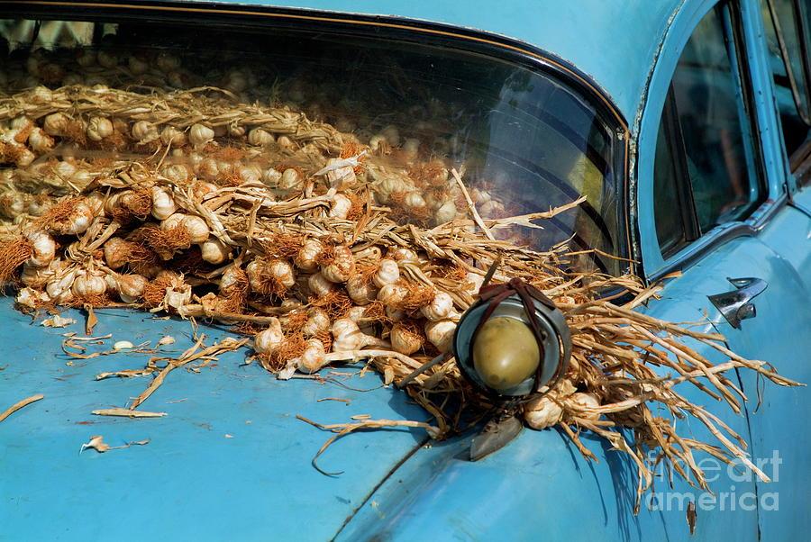 Abundance Photograph - Classic American Car With Trailer Full Of Garlic by Sami Sarkis