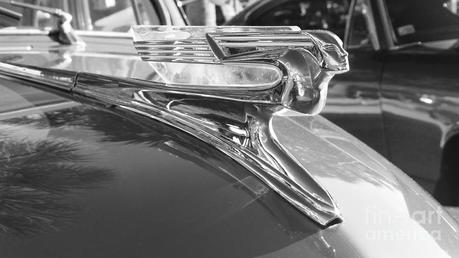 Classic Cars - 1941 Chevy Special Deluxe Business Coupe - Flying Lady Hood  Ornament Black And White by Jason Freedman