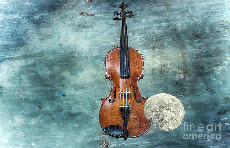 Violin Photograph - Classical Space   by Steven Digman