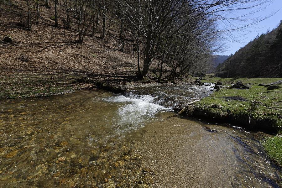 Above Photograph - Clear water Shteaza near Rasinari by Adrian Bud