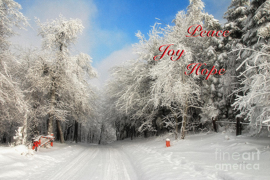 Christmas Photograph - Clearing Skies Christmas Card by Lois Bryan