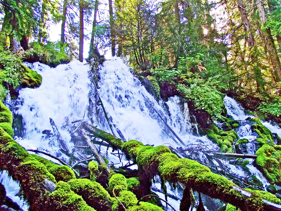 Oregon Photograph - Clearwater Falls, Highway 138, Umpqua National Forest, Oregon by Ruth Hager