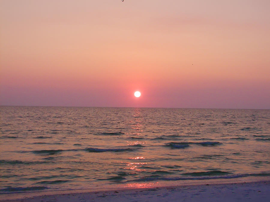 Florida Photograph - Clearwater Sunset by Bill Cannon