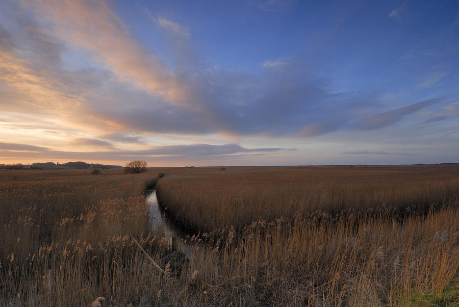 England Photograph - Cley Marshes  by Liz Pinchen
