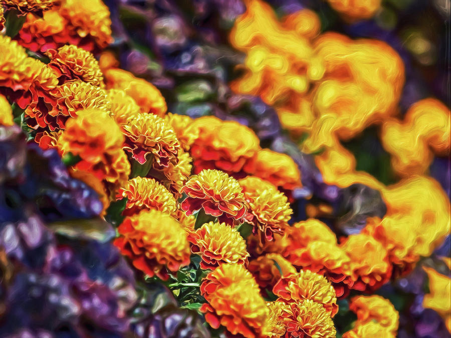Cliffside Flowers Digital Art by Doctor MEHTA