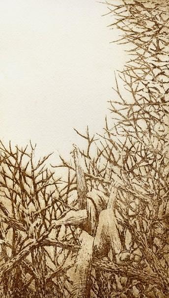 Climb Drawing by John  Stidham