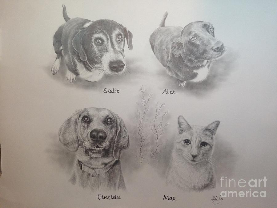 Cline Pets by Mike Ivey