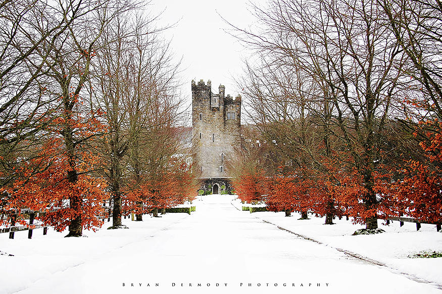Cloghan Castle, Co Galway, Ireland Photograph by Bryan Dermody