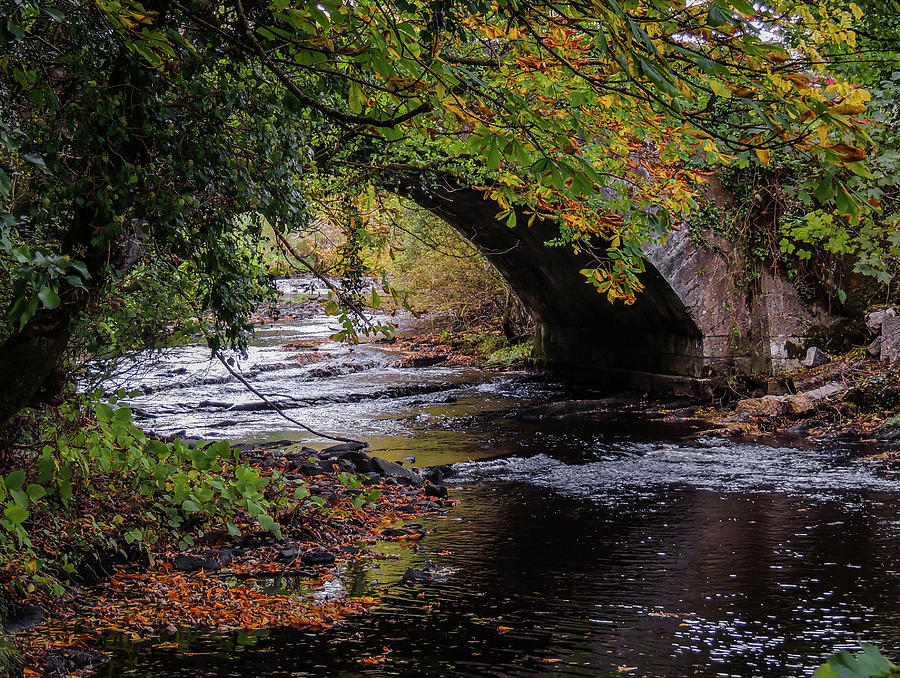 Autumn Photograph - Clondegad Bridge In Autumn by James Truett