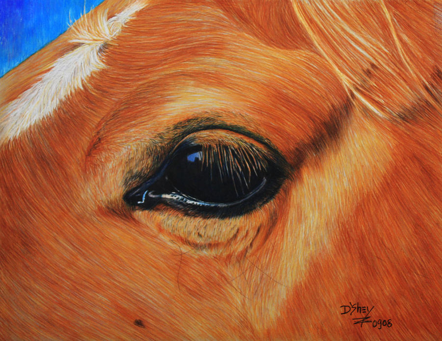 Horse Painting - Close Up Of A Horse by Don MacCarthy