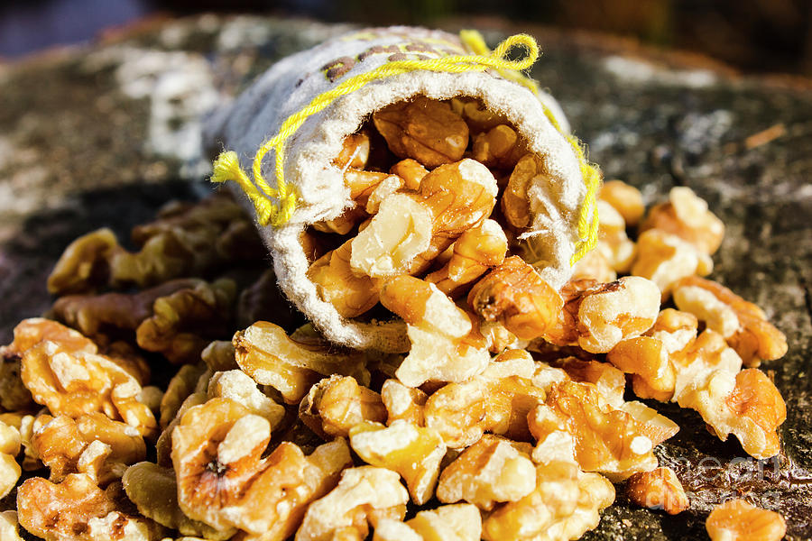 Nut Photograph - Closeup Of Walnuts Spilling From Small Bag by Jorgo Photography - Wall Art Gallery
