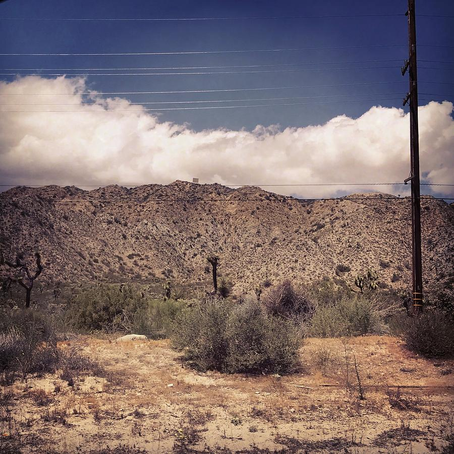 Landscape Photograph - Cloud Blankets Over Joshua Tree by Lorie Stevens