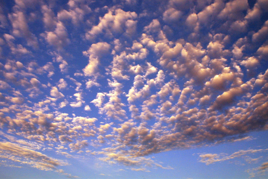 Clouds Photograph - Cloud Expression 1 by Vicki Hone Smith